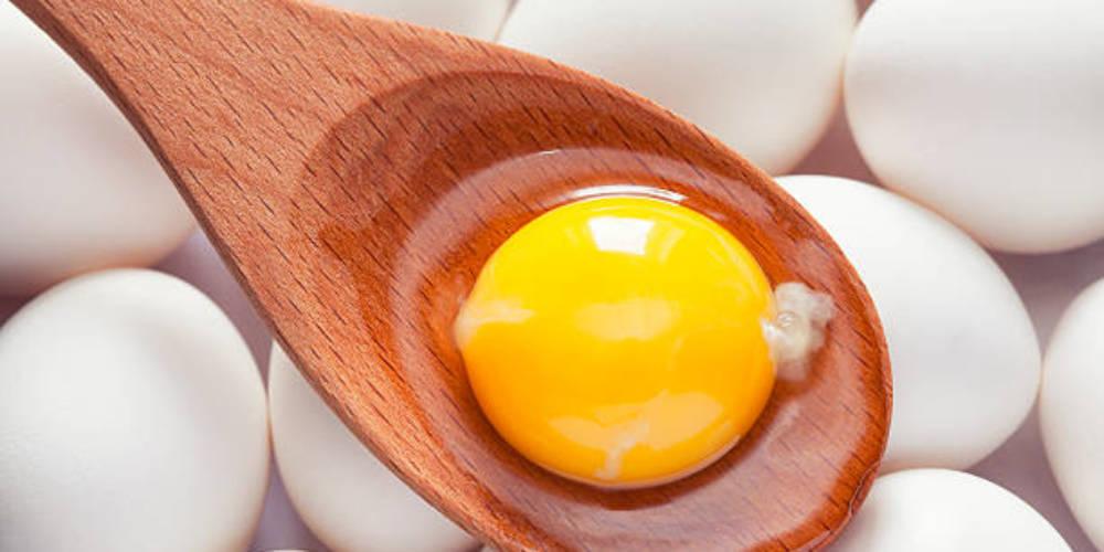 Egg White v/s Egg Yolk