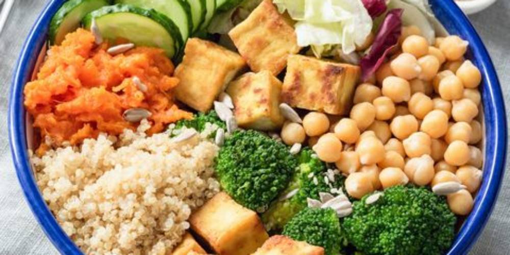 Vegan Diet- Vegetarian Diet- Non-Vegetarian Diet