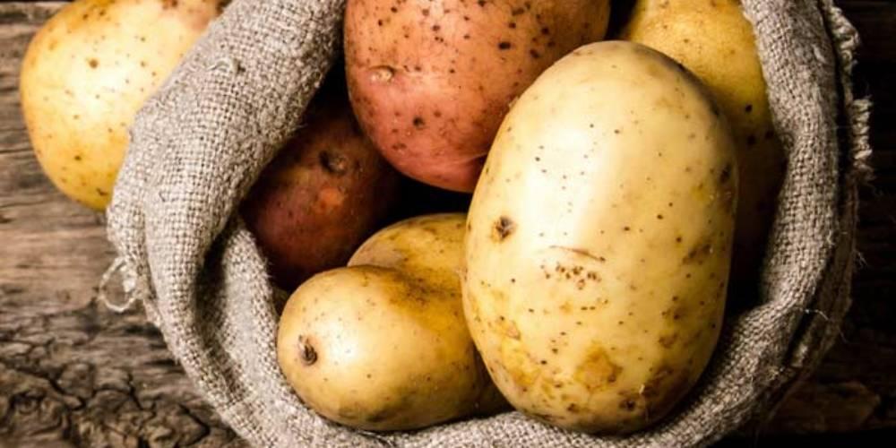 Advantages of Potato?